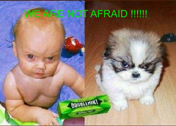 baby & dog not afraid fabioitaly2